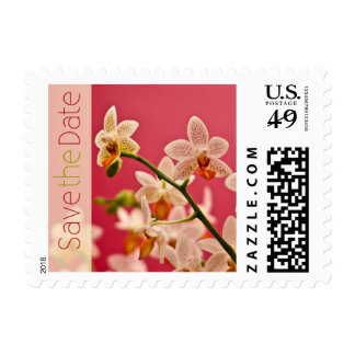 Red Orchid • Save the Date Stamp