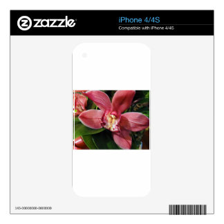 Red Orchid Skins For The iPhone 4S