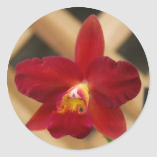 Red Orchid stickers