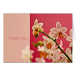Red Orchid • Thank You Card