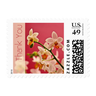 Red Orchid • Thank You Stamp