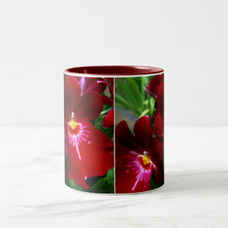 Red Orchid Two-Tone Coffee Mug