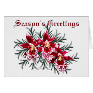 Red Orchids Holiday Card