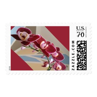 Red orchids medium sized postage stamp