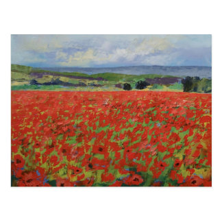 Red Oriental Poppies Postcard
