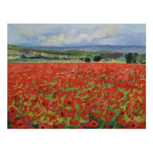 Red Oriental Poppies Postcard