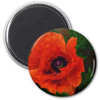 Red Oriental Poppy 2 Inch Round Magnet