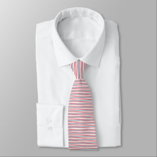 Red Outlined Static Pastel Blue Stripes Tie