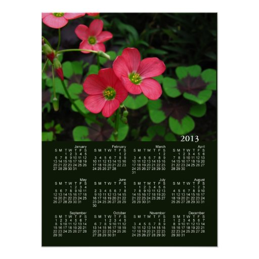 Red Oxalis Calendar ~ print