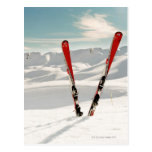 Red pair of ski standing in snow postcard