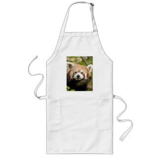 red-panda-004, panda roja delantal largo