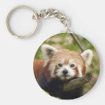 red-panda-005 basic round button keychain