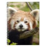 red-panda-007 libro de apuntes con espiral