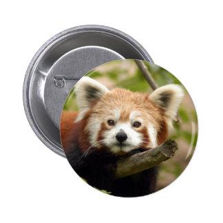 red-panda-007 pin redondo de 2 pulgadas