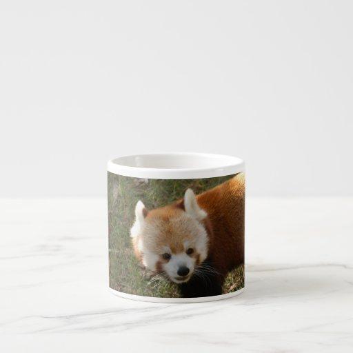 red-panda-015 taza de espresso