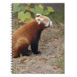 red-panda-016 libro de apuntes con espiral