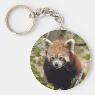 red-panda-024 basic round button keychain