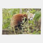 red-panda-025 toallas de mano