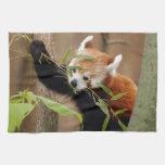 red-panda-026 toallas de mano