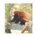 red-panda-028 libreta para notas