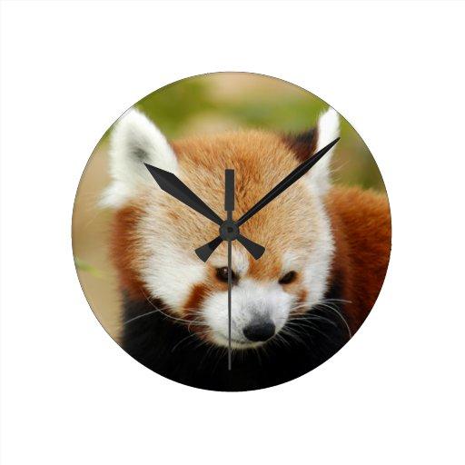 red-panda-030 reloj redondo mediano