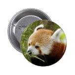 red-panda-031 pins