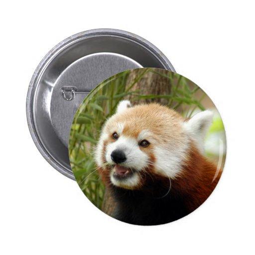 red-panda-033 pin redondo de 2 pulgadas