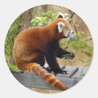 red-panda-037 classic round sticker