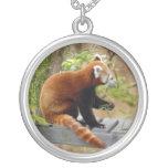 red-panda-037 joyerias