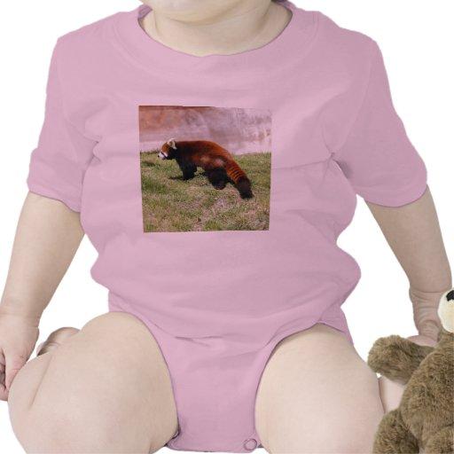 Red Panda-043 T-shirt