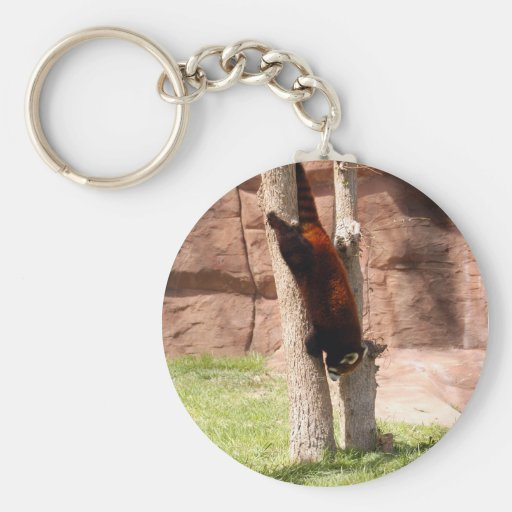 red-panda-047 basic round button keychain