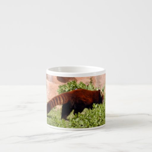 red-panda-048 6 oz ceramic espresso cup