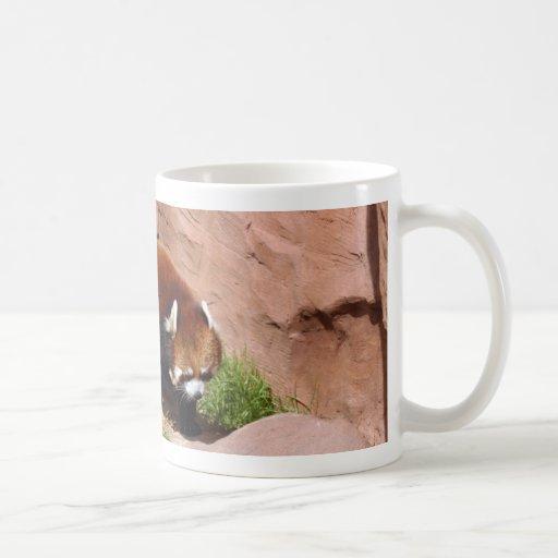 red-panda-050 taza de café