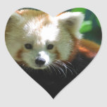 red-panda-11.jpg pegatina de corazón