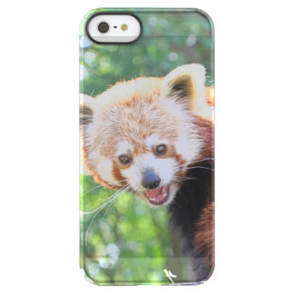Red_Panda_2015_0306 Uncommon Permafrost® Deflector iPhone 5 Case