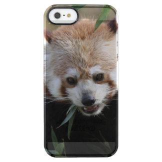 Red_Panda_2015_0311 Clear iPhone SE/5/5s Case