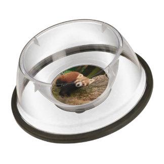 red Panda 415P Pet Bowl