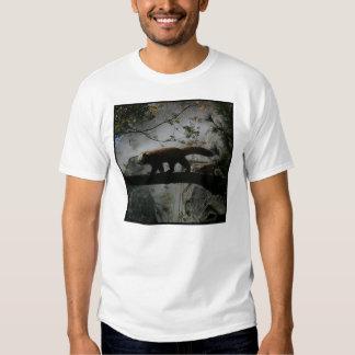 Red Panda #6 Tee Shirt