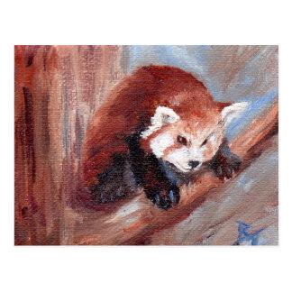 Red Panda aceo Postcard