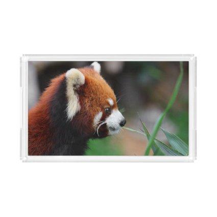 Red panda acrylic tray