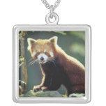 Red Panda Ailurus fulgens) Square Pendant Necklace
