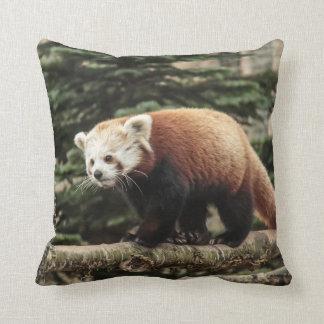 Red Panda American Mojo Pillow