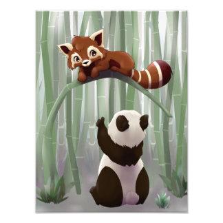 Red panda and panda bear cub photo