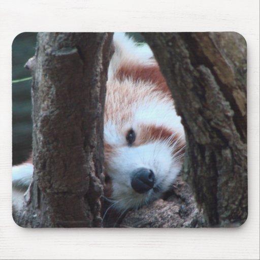 Red Panda Baby Mousepad