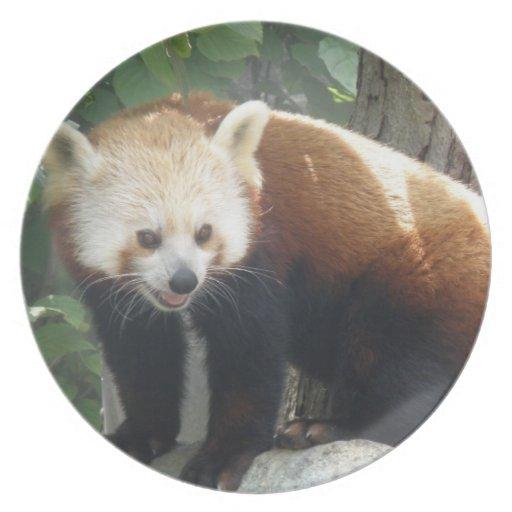 Red Panda Bear Plate