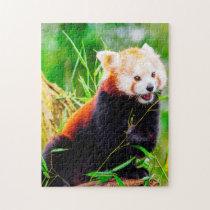 Red Panda Bears. Jigsaw Puzzle