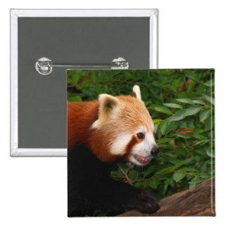 Red Panda Pinback Buttons