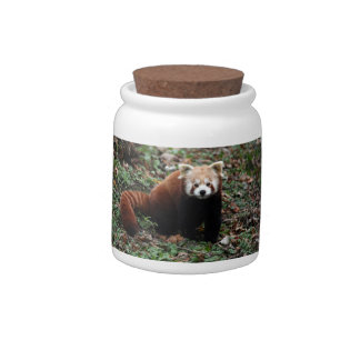 Red Panda Candy Jars