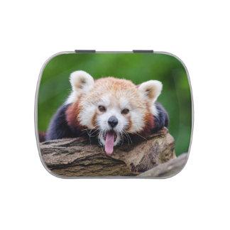 Red Panda Candy Tins