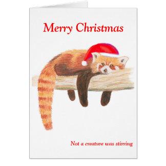 Red Panda Christmas card